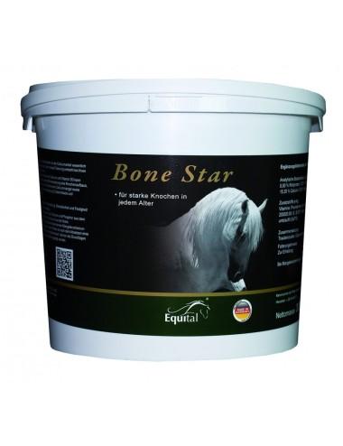 Equital Bone Star