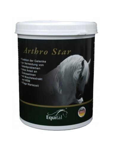 Equital Arthro Star Pulver