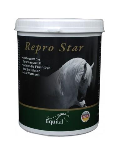 Equital Repro Star Pulver