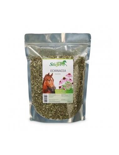 Stiefel Echinacea- Kräuterfutter für das Immunsystem von Pferden
