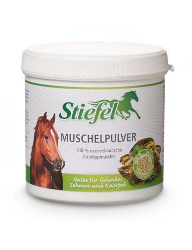 Stiefel Muschelpulver- Ergänzungsfutter für Pferde aus Grünlipp- Muschelpulver