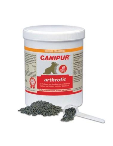 Canipur arthrofit