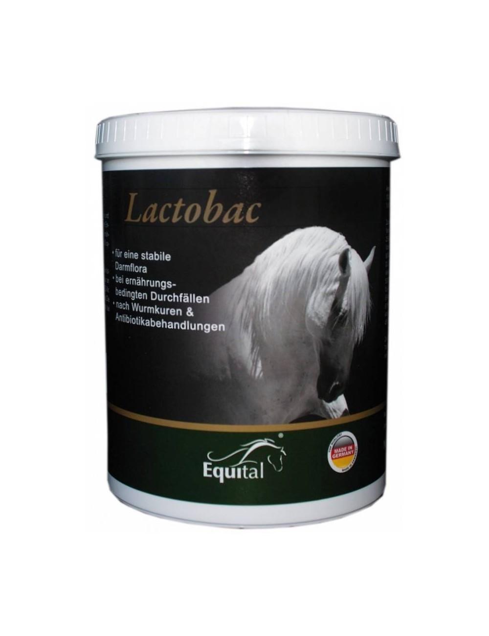 Equital Lactobac
