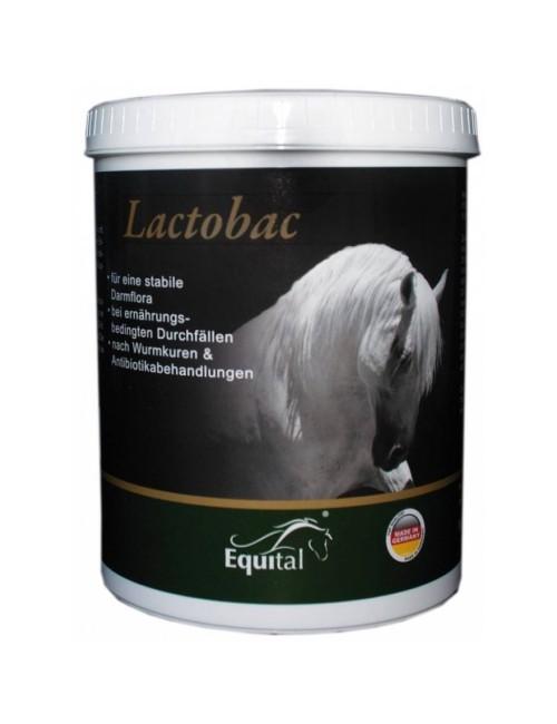 Equital Lactobac Pulver