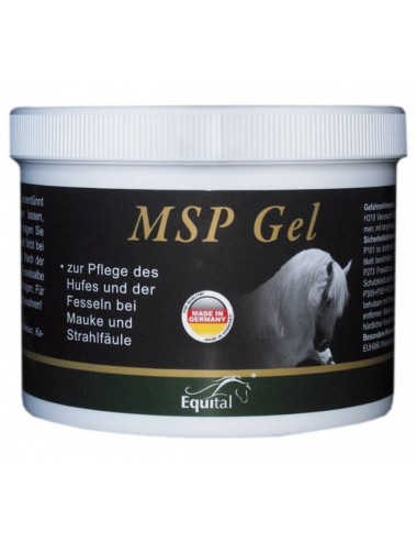Equital MSP Gel