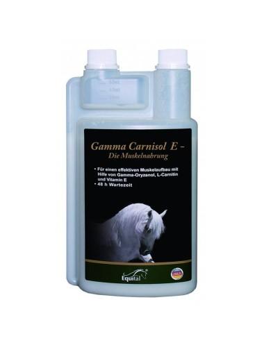 Equital Gamma Carnisol E
