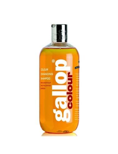 Day&Carr&Martin Gallop farbverstärkendes Shampoo-Fuchs & Palomino