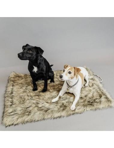 Kentucky Dogwear Hundebett Fuzzy Blanket To Go