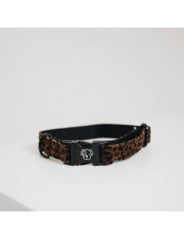 Kentucky Hundehalsband Leopard